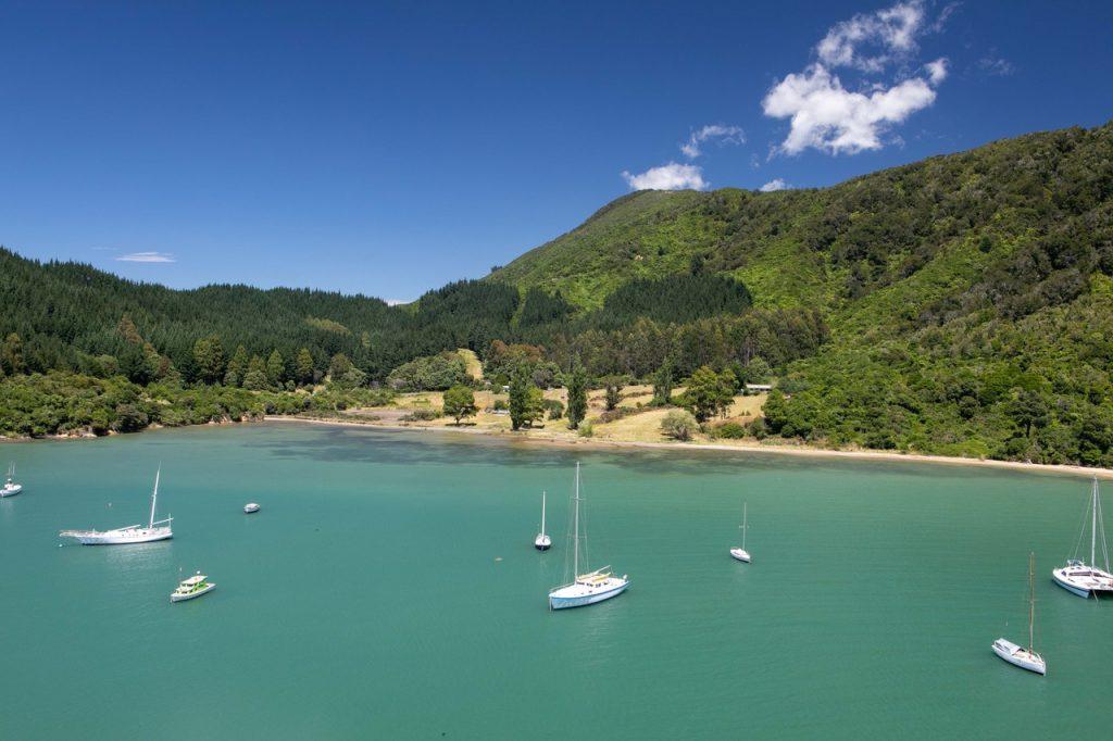Picton, New Zealand. Photograph taken by Dr Michael Chan